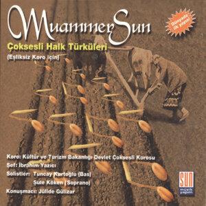 Muammer Sun 歌手頭像