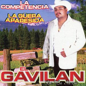 El Gavilan De La Sierra 歌手頭像
