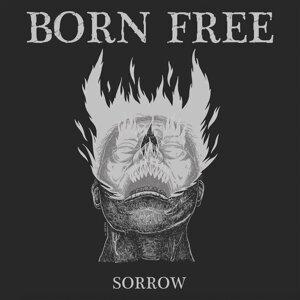 Born Free 歌手頭像
