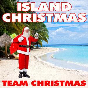 Team Christmas 歌手頭像