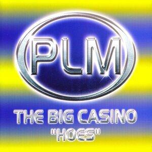 The Big Casino 歌手頭像