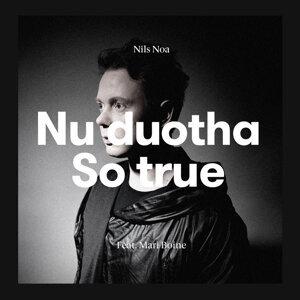Nils Noa 歌手頭像