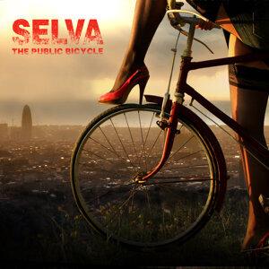 Selva 歌手頭像