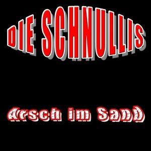 Die Schnullis 歌手頭像