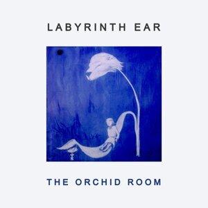 Labyrinth Ear 歌手頭像