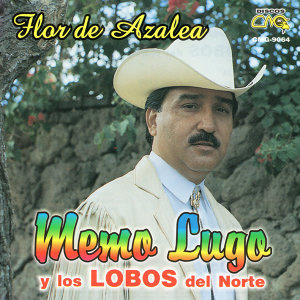 Memo Lugo 歌手頭像