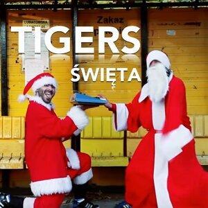 Tigers 歌手頭像