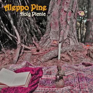 Aleppo Pine
