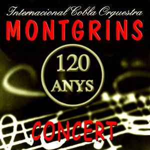 Montgrins 歌手頭像