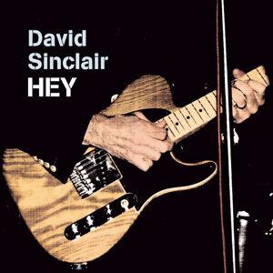 David Sinclair Trio 歌手頭像