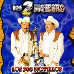 Los Dos De La Sierra 歌手頭像