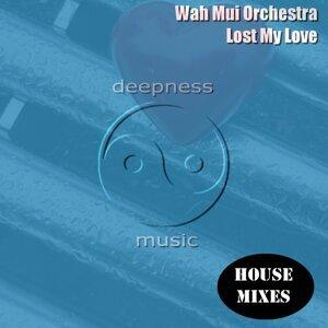 Wah Mui Orchestra