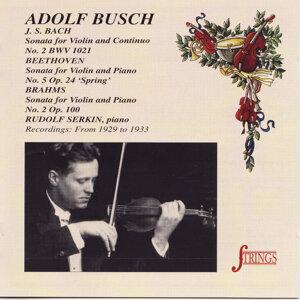 Adolph Busch 歌手頭像