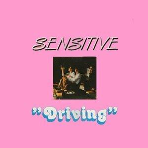 Sensitive 歌手頭像