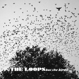 The Loops 歌手頭像