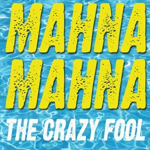 The Crazy Fool 歌手頭像