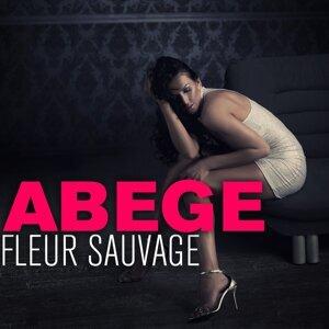 Abege 歌手頭像