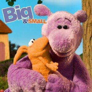 Big, Small 歌手頭像