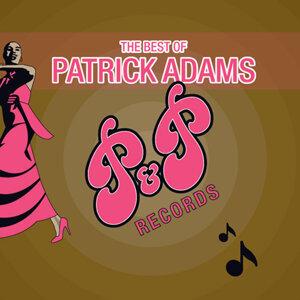 Patrick Adams Orchestra 歌手頭像