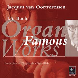 Jacques Van Oortmerssen 歌手頭像