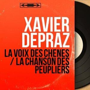 Xavier Depraz 歌手頭像