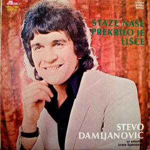 Stevo Damljanovic 歌手頭像