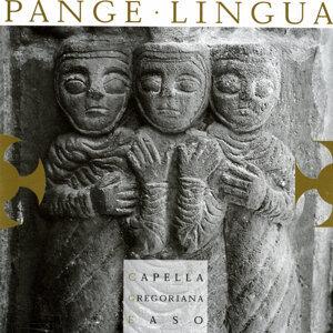Capella Gregoriana Easo 歌手頭像