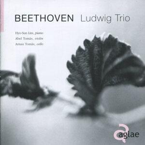 Ludwig Trio 歌手頭像