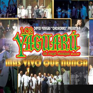 Los Yaguaru de Angel Venegas 歌手頭像