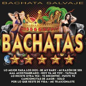 Bachata Salvaje 歌手頭像