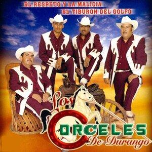 Los Corceles De Durango 歌手頭像