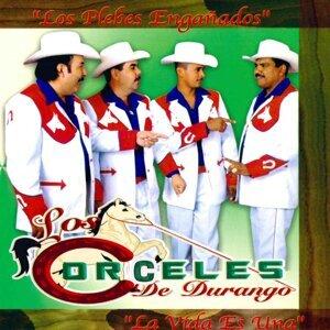 Los Corceles De Durango