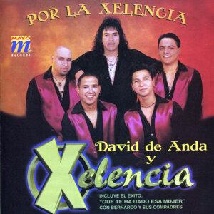 David de Anda y Xelencia 歌手頭像