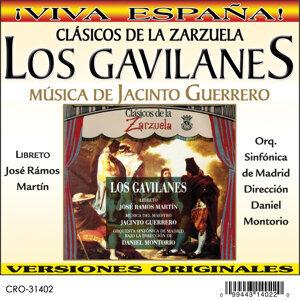 Orquesta Sinfónica de Madrid 歌手頭像