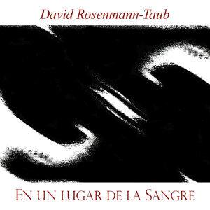 David Rosenmann-Taub 歌手頭像