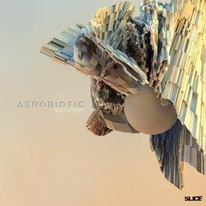 Aerobiotic 歌手頭像
