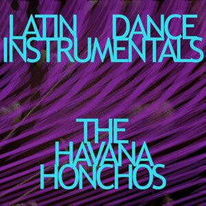 Havana Honchos 歌手頭像