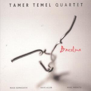 Tamer Temel Quartet 歌手頭像