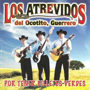 Los Atrevidos del Ocotito, Guerrero 歌手頭像