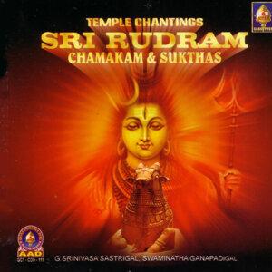 G.Srinivasa Sastri 歌手頭像
