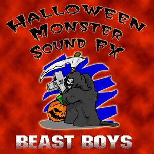 Beast Boys 歌手頭像