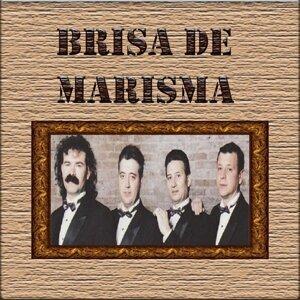 Brisa de Marisma 歌手頭像
