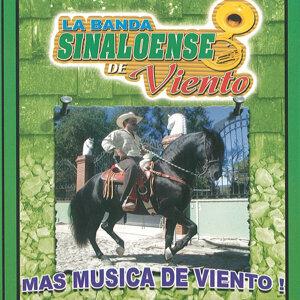 La Banda Sinaloense De Viento 歌手頭像