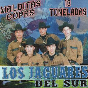 Los Jaguares Del Sur 歌手頭像