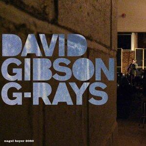 David Gibson 歌手頭像