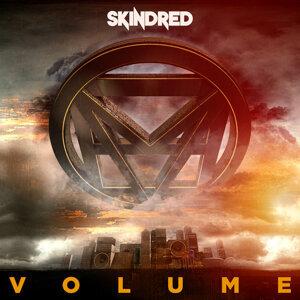 Skindred (史奇椎合唱團) 歌手頭像