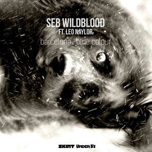 Seb Wildblood