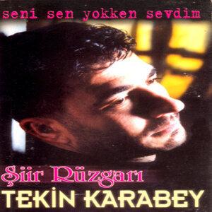 Tekin Karabey 歌手頭像