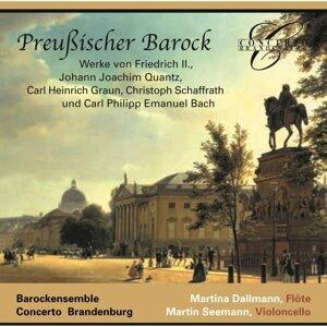 Concerto Brandenburg 歌手頭像