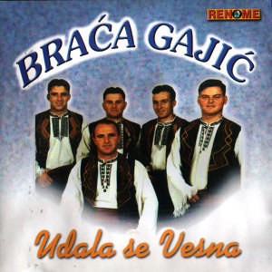 Braca Gajic 歌手頭像